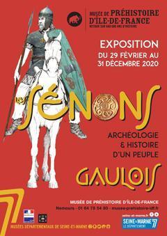 """Affiche de l'exposition """"Les Sénons. Archéologie et Histoire d'un peuple gaulois"""""""
