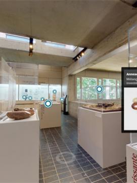 Vignette visite virtuelle de l'exposition Les Sénons.