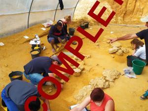 Photo du chantier de fouilles archéologiques d'Ormesson (77)