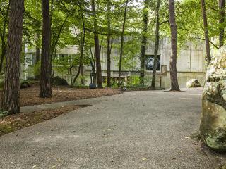 L'allée menant au musée à travers le parc forestier du musée