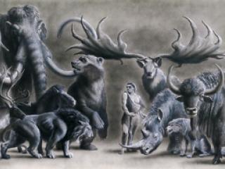 Neandertal et animaux.