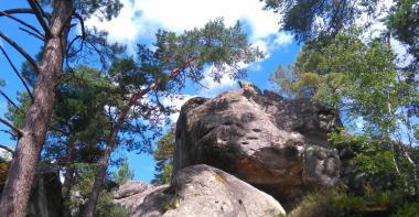 Paysage de rochers de grès dans la forêt de Fontainebleau