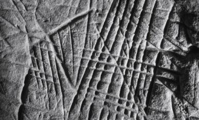 Couverture Mémoire rupestre, les roches gravées du Massif de Fontainebleau.