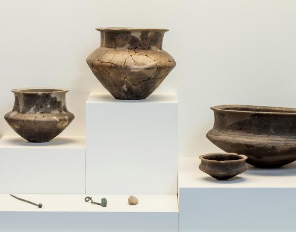 Collections archéologiques conservées au musée départemental de Préhistoire.