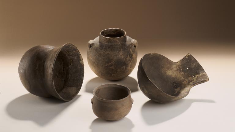 """Ensemble de céramiques découvertes sur le site néolithique """"Le Haut de Nachères"""" à Noyen-sur-Seine (77)"""