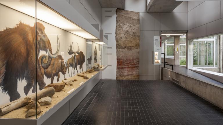 vue de la salle 2 du musée