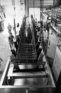 La barque carolingienne en cours de restauration au laboratoire ARC-Nucléart.